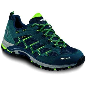 Meindl Outdoor SchuhCaribe GTX  - 3825 grün