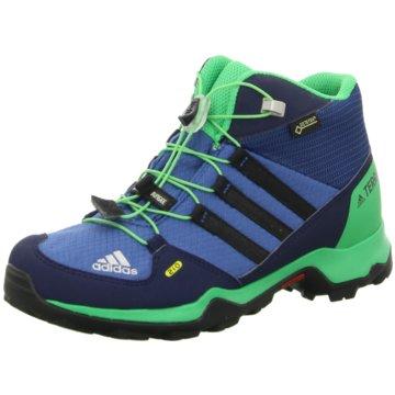 adidas Wander- & BergschuhTerrex Mid GTX K blau