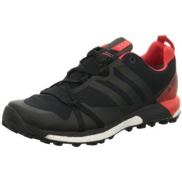 adidas HikingschuheTerrex Agravic Boost GTX schwarz