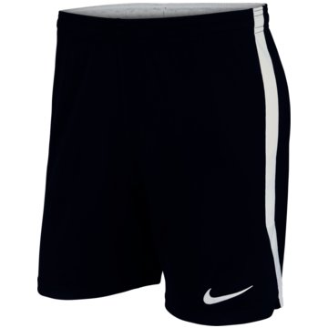 Nike FußballshortsDRI-FIT - AJ1239-410 -
