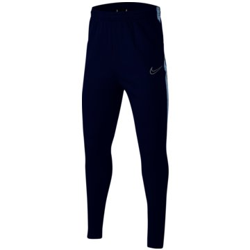 Nike TrainingshosenTHERMA ACADEMY - BQ7468-455 -