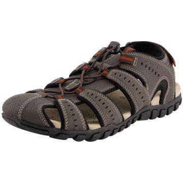 Geox Outdoor Schuh grau