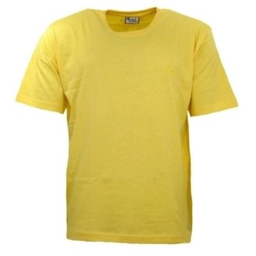 wind sportswear T-Shirts basic gelb