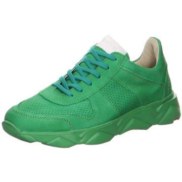 Lloyd Sneaker LowAspen grün