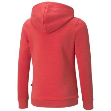 Puma SweatshirtsESS LOGO HOODIE FL G - 587031 pink