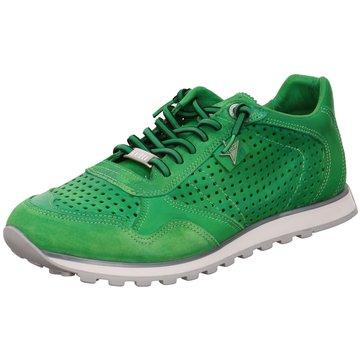 Cetti Sneaker LowSneaker grün