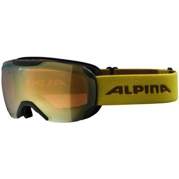 ALPINA Ski- & Snowboardbrillen grau