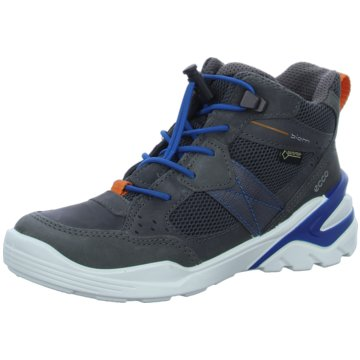 Ecco Sneaker HighECCO BIOM VOJAGE grau