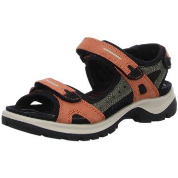 Ecco Outdoor Schuh -