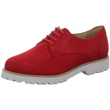 Sioux Sale Schuhe jetzt reduziert online kaufen |