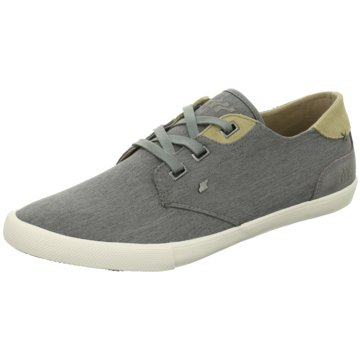 Boxfresh Sneaker LowStern grau