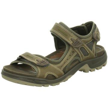 Ecco Komfort SchuhOffroad grün