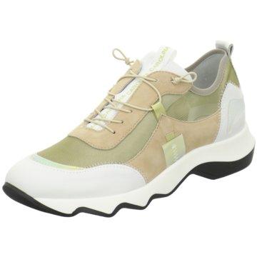 Donna Carolina Sneaker Low -