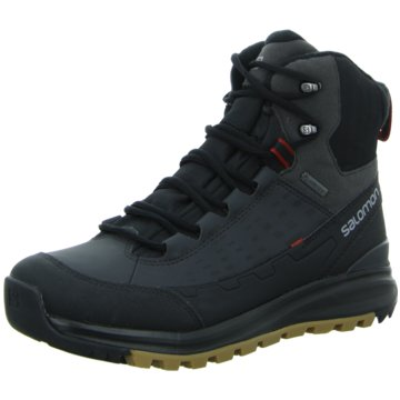 Salomon SHOES KAÏPO MID GTX® Black/ASP