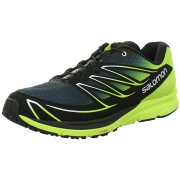 Salomon Running -
