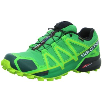 Salomon TrailrunningSpeedcross 4 GTX grün