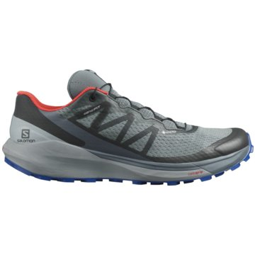Salomon TrailrunningSENSE RIDE 4 GORE-TEX INVISIBLE FIT - L41377800 grau