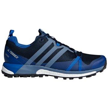 adidas Sneaker LowTerrex Agravic Boost GTX blau