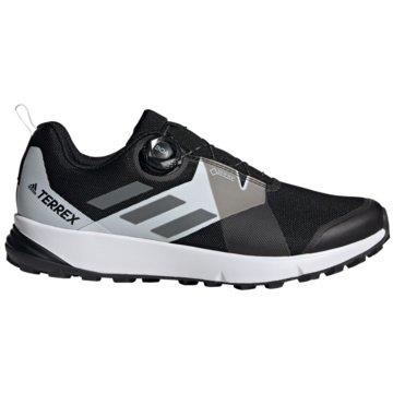 adidas TrailrunningTerrex Two Boa GTX schwarz