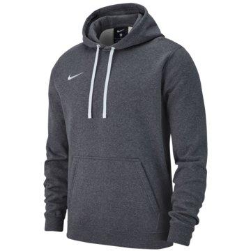 Nike HoodiesM HOODIE PO FLC TM CLUB19 - AR3239 grau