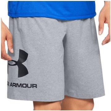 Under Armour kurze SporthosenSportstyle Graphic Short grau