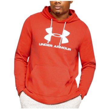 Under Armour SweatshirtsSportstyle Logo Terry Hoodie rot