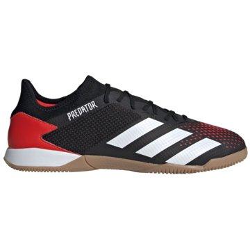 adidas Hallen-SohlePredator 20.3 Low IN schwarz