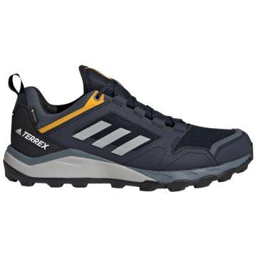 adidas TrailrunningTerrex Agravic TR GTX schwarz