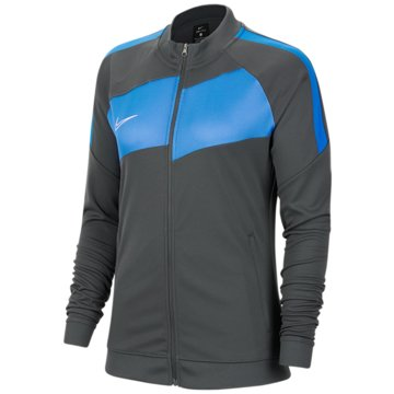 Nike ÜbergangsjackenDRI-FIT ACADEMY PRO - BV6932-060 grau