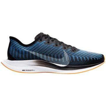 Nike RunningZoom Pegasus Turbo 2 Rise blau