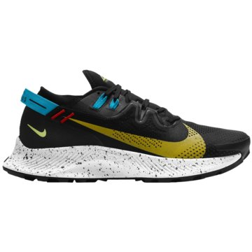 Nike RunningPEGASUS TRAIL 2 - CK4305-001 schwarz