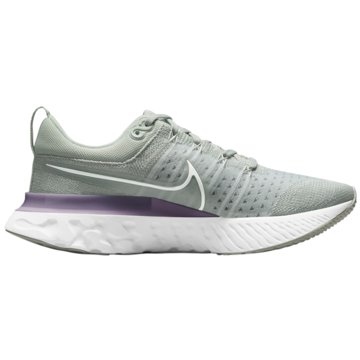 Nike RunningREACT INFINITY RUN FLYKNIT 2 - CT2423-005 grau