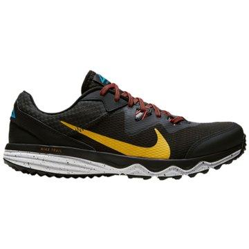 Nike RunningJUNIPER TRAIL - CW3808-005 schwarz