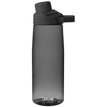 Camelbak Trinkflaschen grau