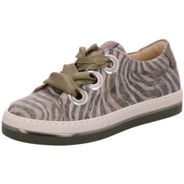 Gabor Sportlicher SchnürschuhSneaker animal