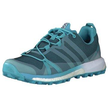 adidas TrailrunningTerrex Agravic Boost GTX Women blau