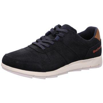 Boxfresh Sneaker LowAckworth blau