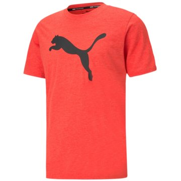 Puma T-ShirtsTRAIN FAV HEATHER CAT SS T - 520139 rot