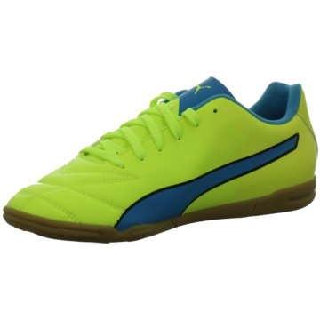 Puma Indoor Adreno II IT