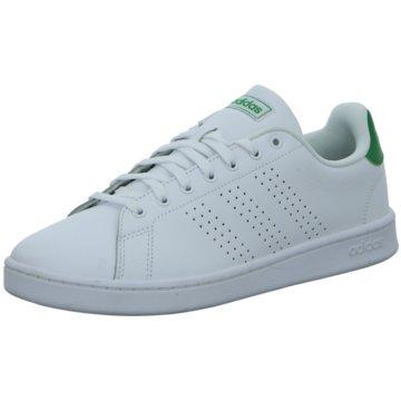 adidas Sneaker LowADVANTAGE - F36424 weiß