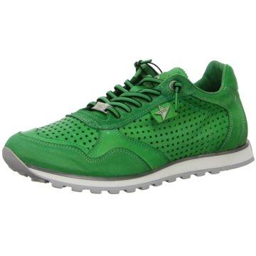 Cetti Sportlicher Schnürschuh grün
