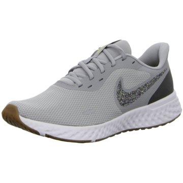 Nike RunningREVOLUTION 5 PREMIUM - CV0159-019 grau