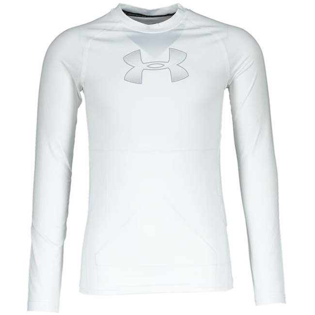 Langarmhemden Under Armour