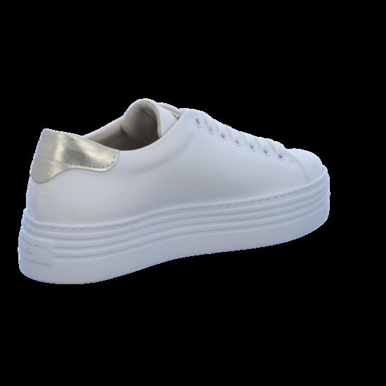 SS1808S141 Plateau Sneaker von Tosca Tosca von Blu--Gutes Preis-Leistungs-, es lohnt sich f24a7a